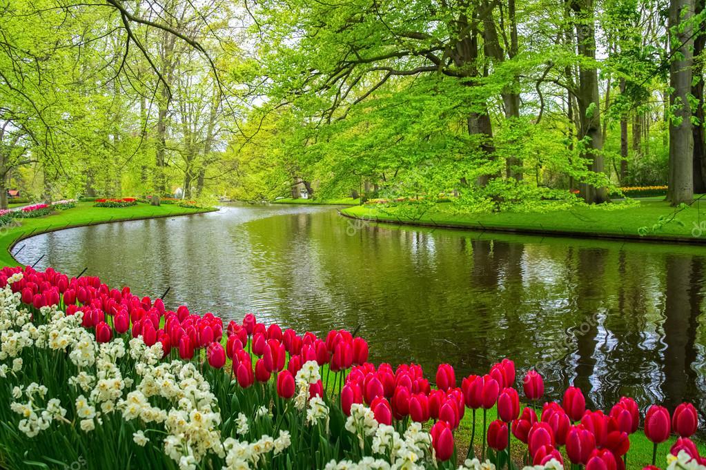 Tips For Spring Bulb Planting