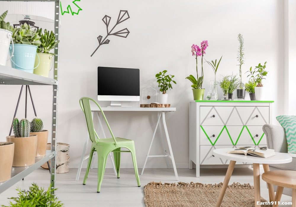Environmentally Friendly Home Decor: Tips and Tricks